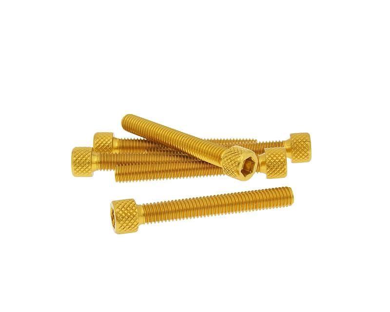 Schraubensatz 6 Stück Verkleidung Gold M6X30 für Roller Quad Scooter Piaggio